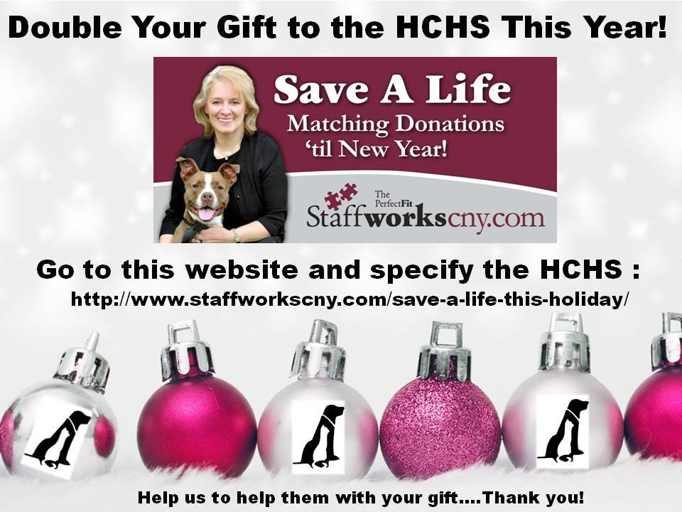 Staffworks Save A Life Campaign