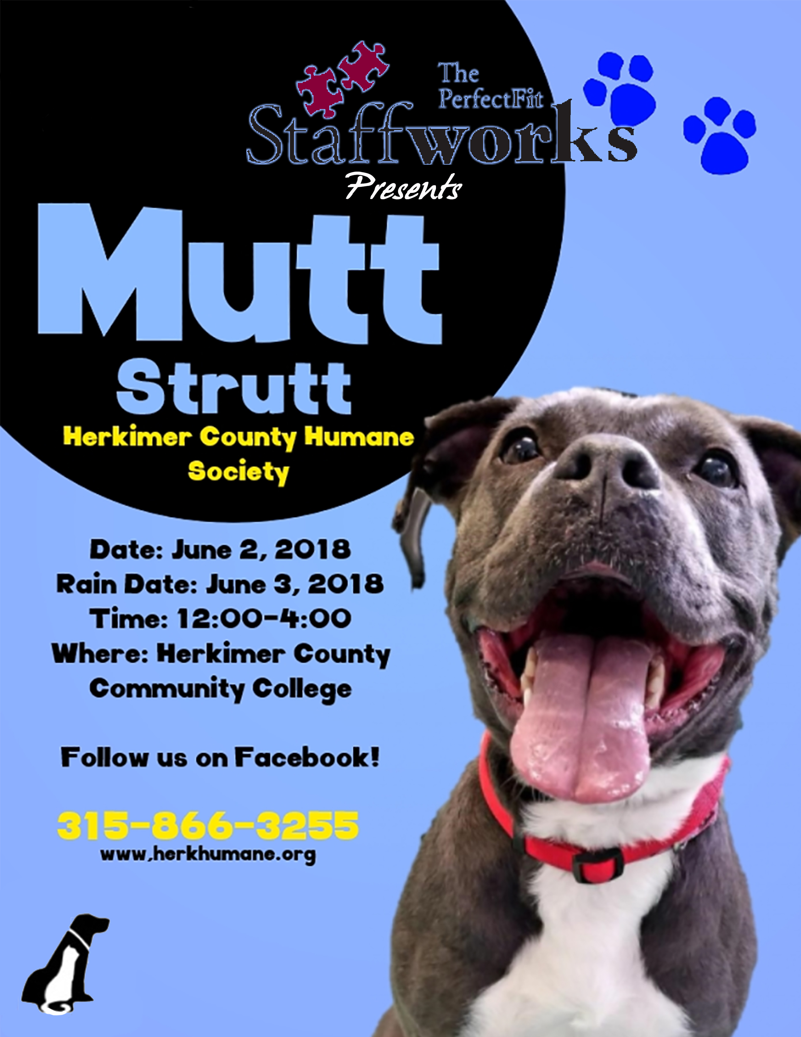 22nd Annual Mutt Strut