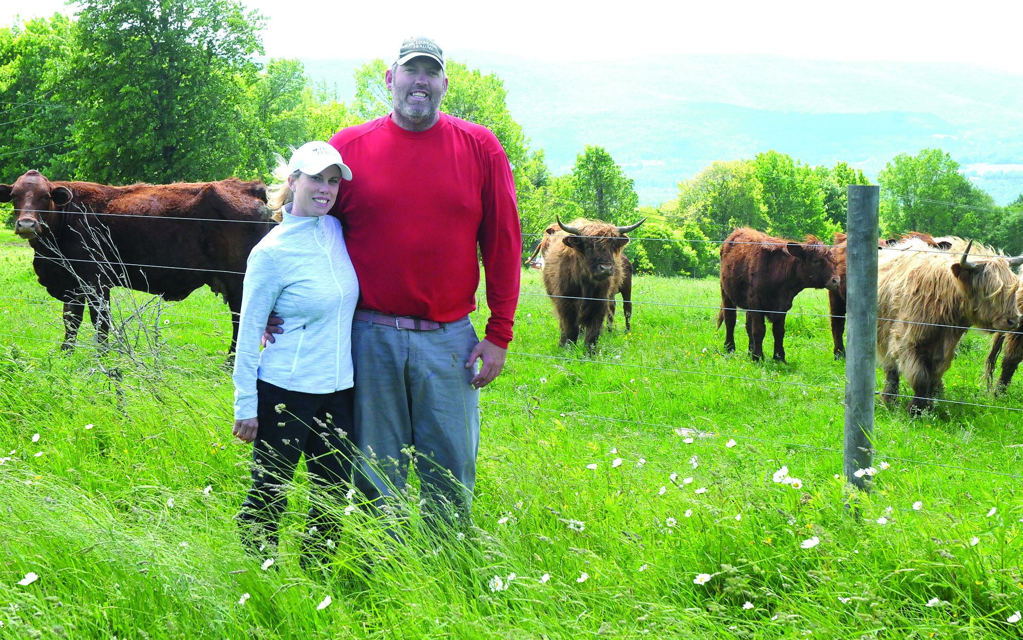 Highland Hollow: From farm to chef to table
