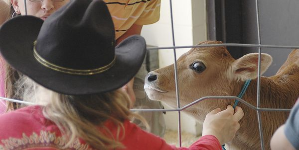 Sharon FFA shares love of farming