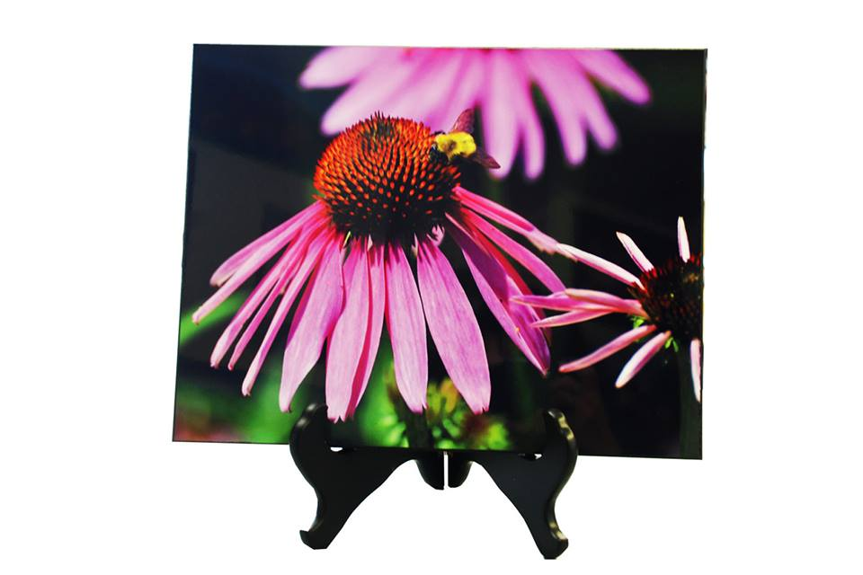 Pictures on Wood