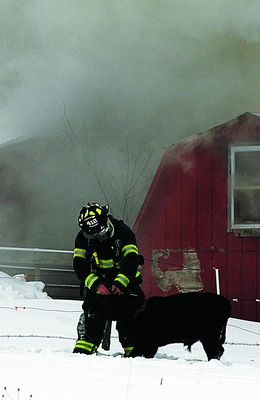 Cows rescued from Sunday barn fire