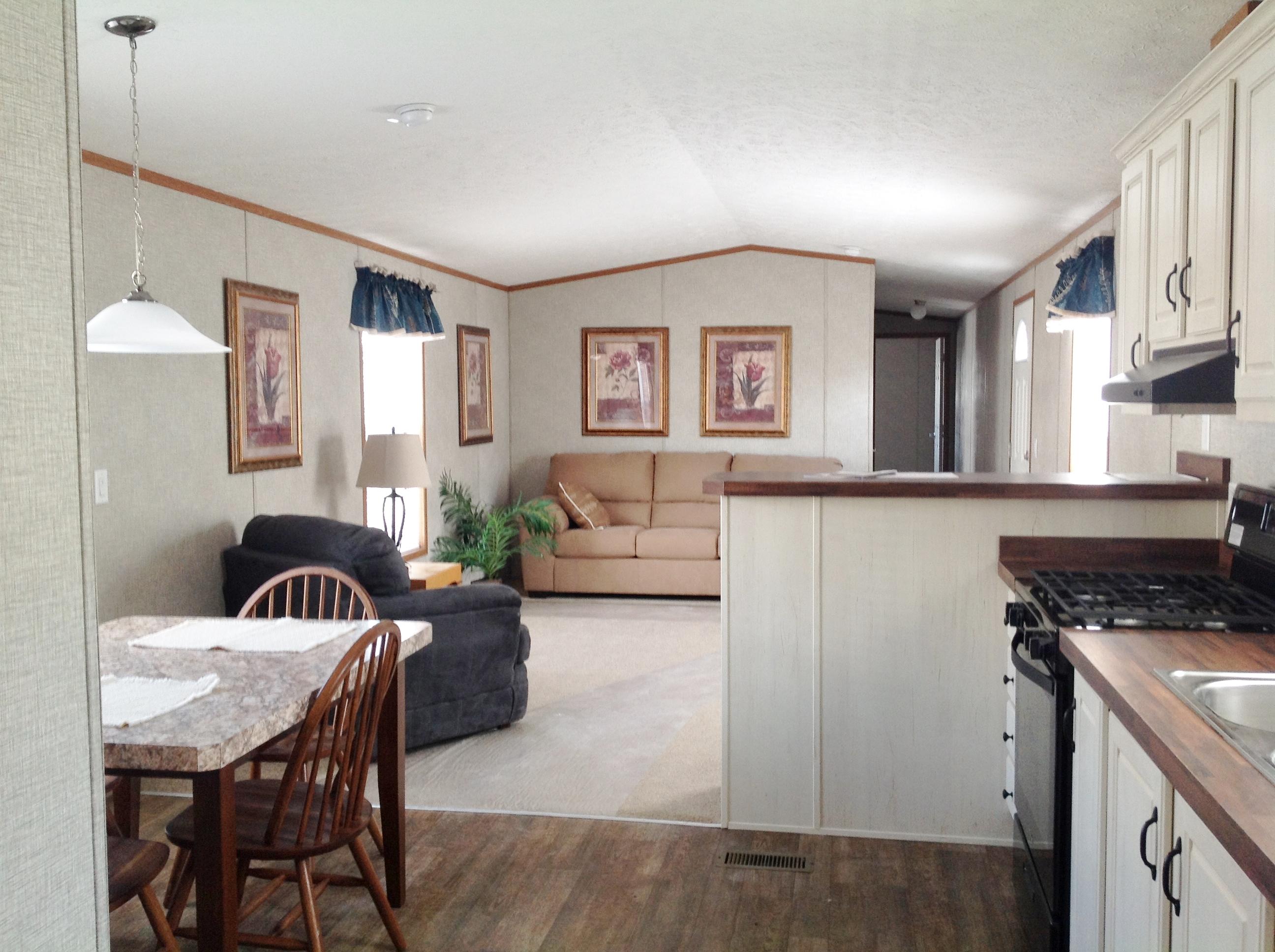 Wider View From Kitchen